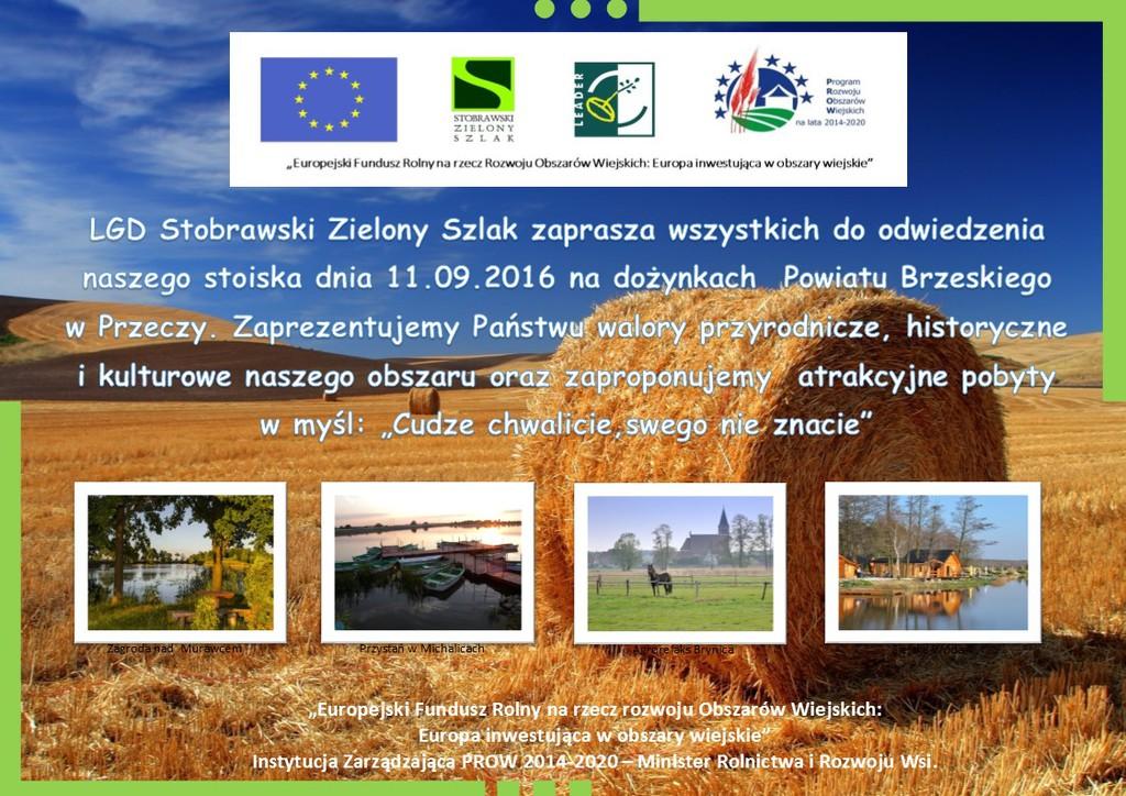 dożynki powiatu brzeskiego_Iwona3_Web.jpeg