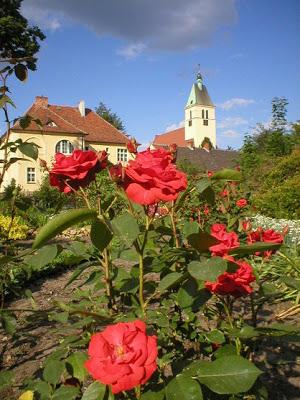 Ogród botaniczny Zagwiździe.jpeg