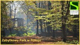 Galeria Atrakcje Stobrawskiego Zielonego szlaku - galeria zdjęć